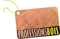 ProfessionsBois